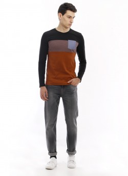 Tee-shirt jersey col rond homme